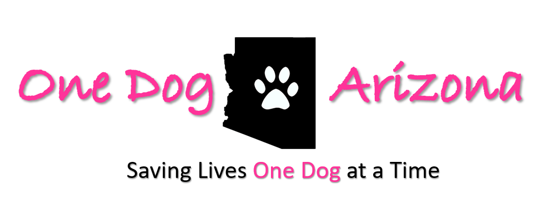 recommended by Be Kind To Dogs - Dog Training Call 480-272-8816 for Dog Training in Chandler, AZ, Dog Training in Gilbert, AZ, Dog Training in Tempe, AZ, Dog Training in Mesa, AZ, Dog Training in Ahwatukee, AZ and surrounding areas. Be Kind To Dogs Kathrine Breeden